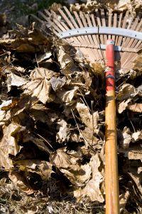 Der Rechen, ein wichtiges Gartengerät