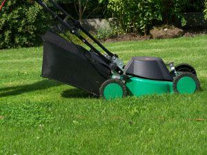 Beim Kauf eines Rasenmähers gilt es einiges zu beachten