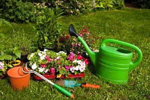 Jeder Hobby-Gärtner braucht eine Grundausstattung an Gartengeräten