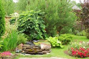 Im August sind vor allem Routinearbeiten im Garten nötig