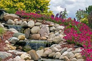 Frühling Im Steingarten Garten Ratgebernet Garten Tipps Für