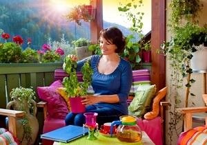 Einen Kleinen Obst- Und Gemüsegarten Auf Dem Balkon Anlegen ... Selbstversorger Garten Anlegen Obst Gemuse