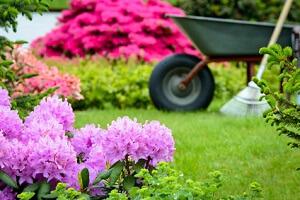 Nach dem Winter braucht der Rasen eine Extra-Behandlung © Stefan Körber - Fotolia.com