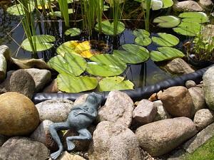 Nach dem Winter muss der Teich gut gepflegt werden © Frank Meyer - Fotolia.com