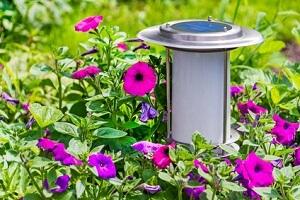 Solarleuchten Fur Den Garten Garten Ratgeber Net Garten Tipps