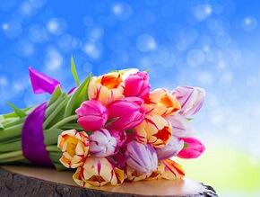 Mit ein paar Tricks kann man Blumensträuße länger frisch halten © Fotowerk - Fotolia.com
