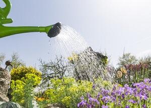 Im Sommer sollte im Garten nur abends bewässert werden © ARochau - Fotolia.com