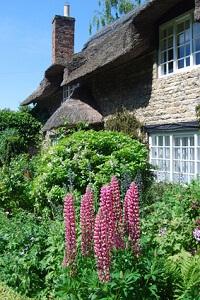 Gärten im Landhausstil wirken besonders natürlich © Ronald Hudson - Fotolia.com