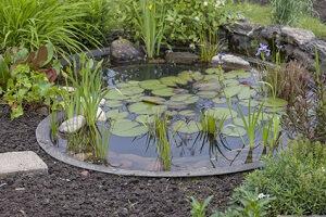 Beim Anlegen eines Gartenteiches gibt es unzählige Gestaltungsmöglichkeiten © D. Ott - Fotolia.com
