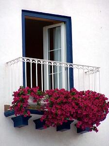 Balkonblumen Richtig Düngen | Garten-ratgeber.net | Garten Tipps ... Blutenpracht Auf Dem Balkon Blumen