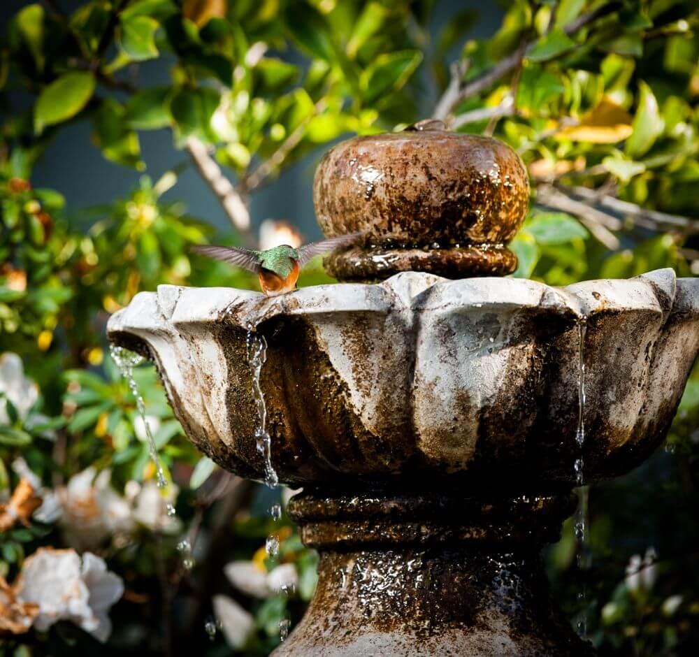 Wasserspiele auf dem Balkon | Garten-Ratgeber.net | Garten Tipps für ...