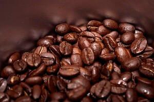 Kaffee enthält viele wertvolle Nährstoffe, die über den Kaffeesatz auch Pflanzen zugute kommen können