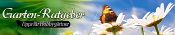 Garten-Ratgeber.net | Garten Tipps für Hobbygärtner