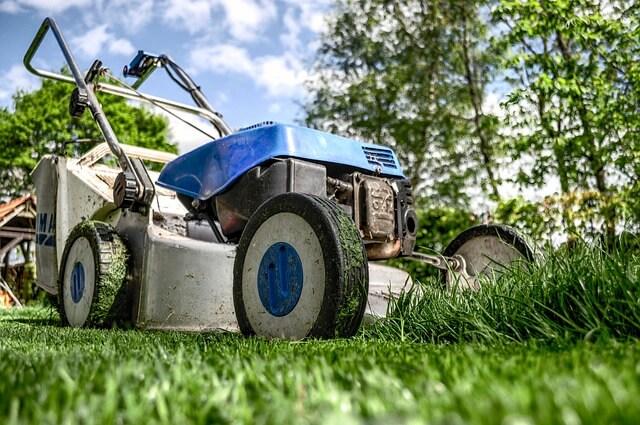 So wird der Rasen im Sommer richtig gemäht