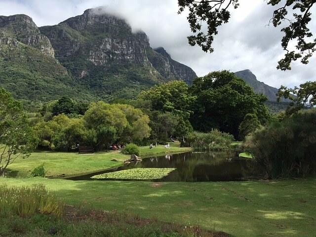 Kirstenbosch Botanical Garden in Kapstadt